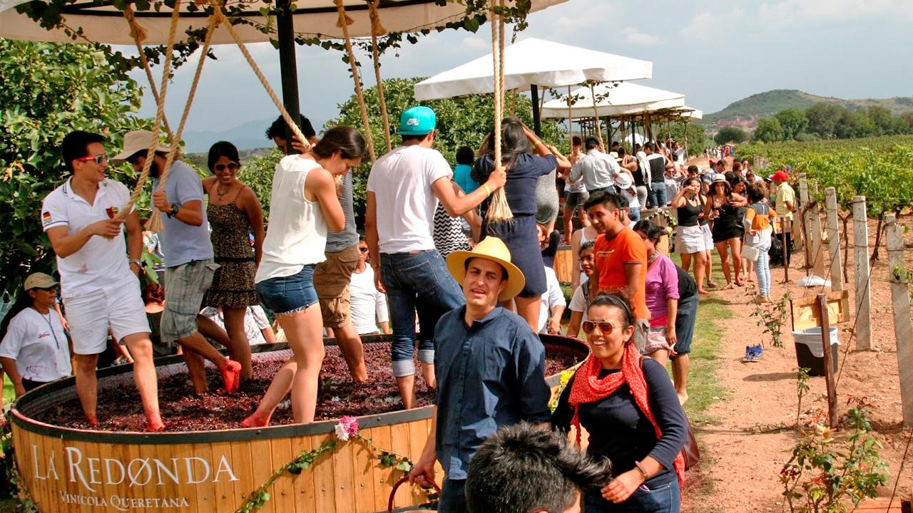 Vendimia, máxima fiesta vinícola